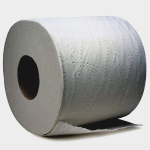 Loo roll, toleit paper, poo ticket